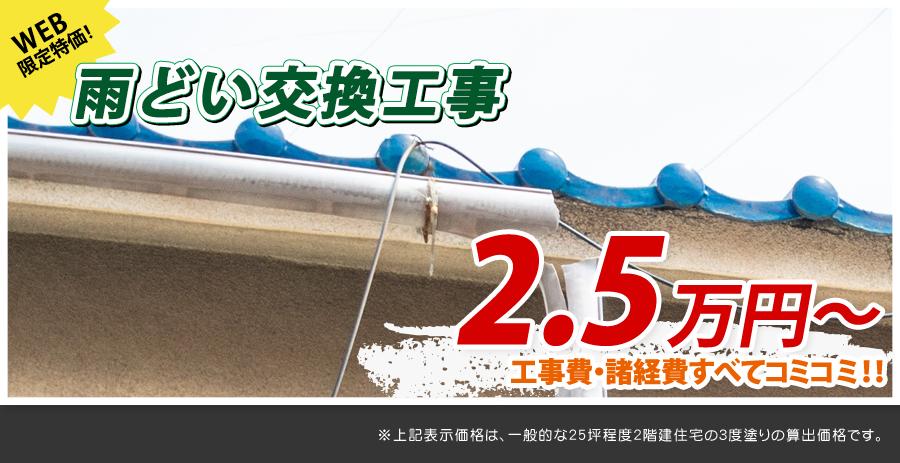 埼玉県の雨どい交換工事料金 樹脂製、高耐久雨どい