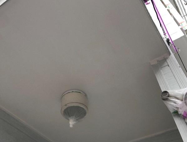 埼玉県越谷市 S様邸 外壁塗装・屋根塗装・付帯部塗装 軒天塗装 軒天の特徴 (3)