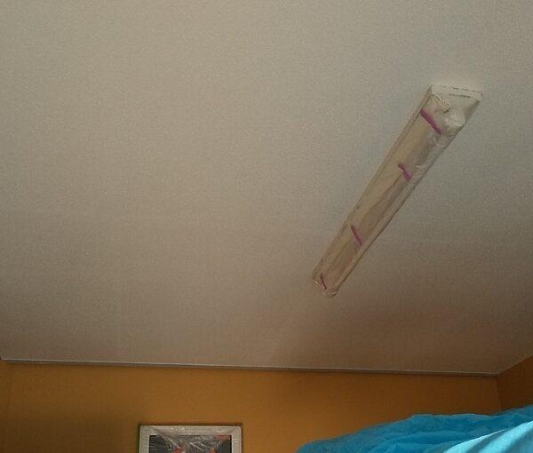 埼玉県川口市 K様邸 屋根塗装 外壁塗装 軒天塗装 付帯部とは 軒天の劣化を放置するとどうなるか (3)