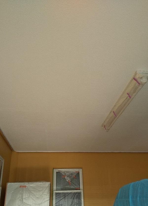 埼玉県川口市 K様邸 屋根塗装 外壁塗装 軒天塗装 付帯部とは 軒天の劣化を放置するとどうなるか (1)