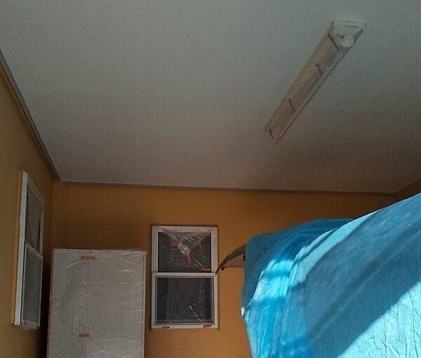 埼玉県川口市 K様邸 屋根塗装 外壁塗装 軒天塗装 付帯部とは 軒天の劣化を放置するとどうなるか (4)