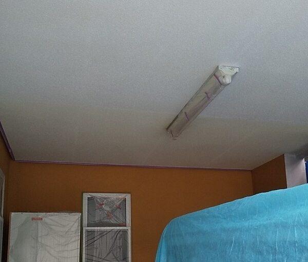 埼玉県川口市 K様邸 屋根塗装 外壁塗装 軒天塗装 付帯部とは 軒天の劣化を放置するとどうなるか (6)