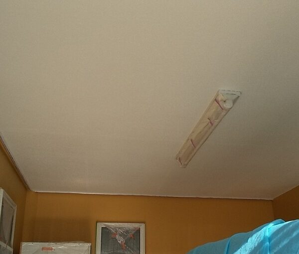 埼玉県川口市 K様邸 屋根塗装 外壁塗装 軒天塗装 付帯部とは 軒天の劣化を放置するとどうなるか (2)