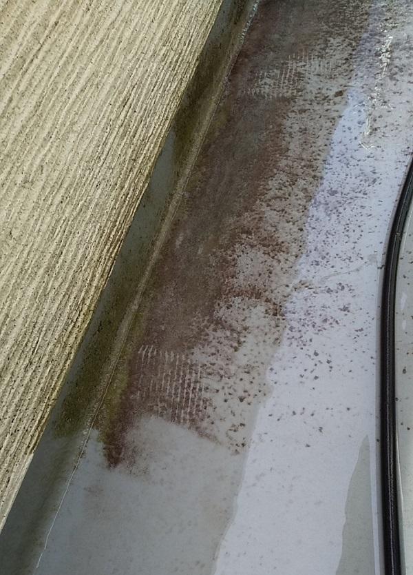 埼玉県久喜市 H様邸 屋根塗装・外壁塗装・付帯部塗装 高圧洗浄の目的とは 塗装しない場所も洗浄します! (14)