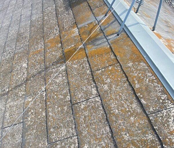 茨城県古河市 T様邸 屋根工事 無料現場調査・お見積り依頼 コロニアル屋根 (1)
